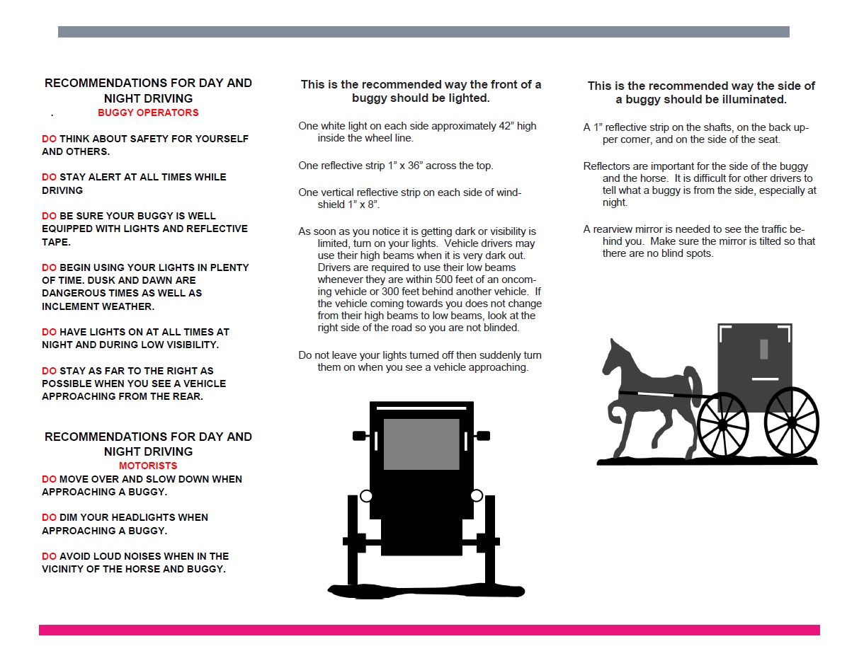 Sharing the Road Brochure_pg2